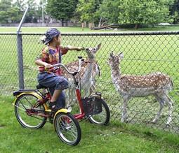 T-Bike mini