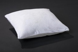 Chiroform Millennium Pillow Original