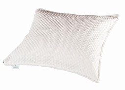 ErgoPur Pillow