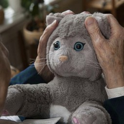 Terapeutisk kat til mennesker med f.eks. demens- JustoCat