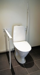 Toilet support with leg - Merryarm