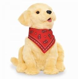 Interaktiv Hund - Socialterapeutisk Hund